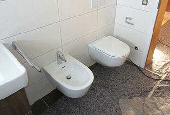 Renovation toilet and bidet after